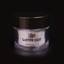 Glitter Dust Holographic Silver .25 oz