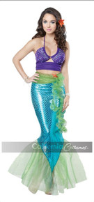 Adult Mythic Mermaid Includes Convertible Bra Top, Tail Skirt, Seaweed Belt, Starfish Pin, Flower Pin