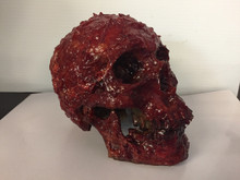 Bloody Scab Resin Skull Prop with movable jaw