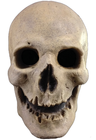Antique Skull Mask Full over the Head