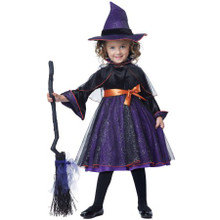 Hocus Pocus Purple & Black Witch Dress