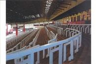 Anfield (No. 1195)