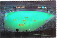 Busch Memorial Stadium (90851-D)