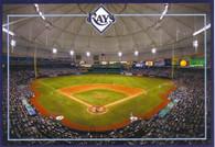 Tropicana Field (RAH-Tampa)