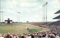 Metropolitan Stadium (132, P17023)