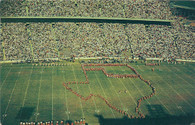 Cotton Bowl (TC-206, 2948)