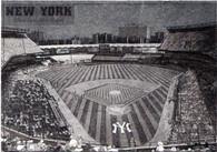 Yankee Stadium (EM556)