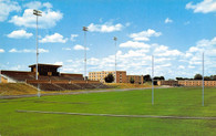 Top Taggart Field (C-13153)