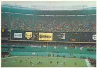 Three Rivers Stadium (126, 310059)