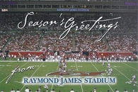 Raymond James Stadium (SeasonGreetings 4)