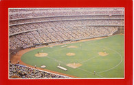 Riverfront Stadium (113 Molloy)