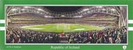 Aviva Stadium (FAIreland)