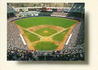 Yankee Stadium (1490 (France))
