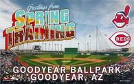 Goodyear Ballpark (2010-Goodyear)