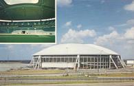 Texas Stadium (ICS-105713L2)