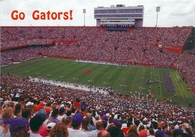 Ben Hill Griffin Stadium at Florida Field (JJ-18034)