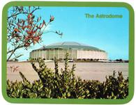 Astrodome (111320-H)