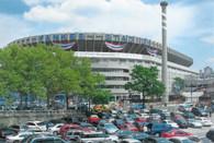 Yankee Stadium (CafePress-Yankee 1)