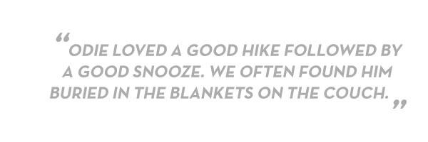 blockquote-good-snooze.jpg