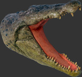 Large Crocodile Head