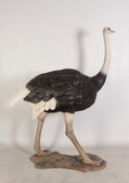 Life Size Ostrich Statue