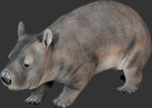 Hairy Nosed Wombat Statue- 3 Ft