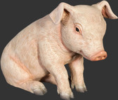 Baby Sitting Pig Statue