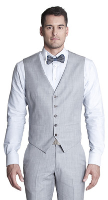 THE LIGHT GREY VEST