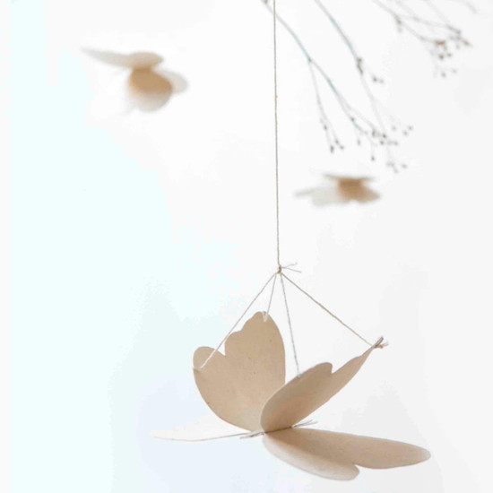 BUTTERFLIES, Paper, Off White by Sukha