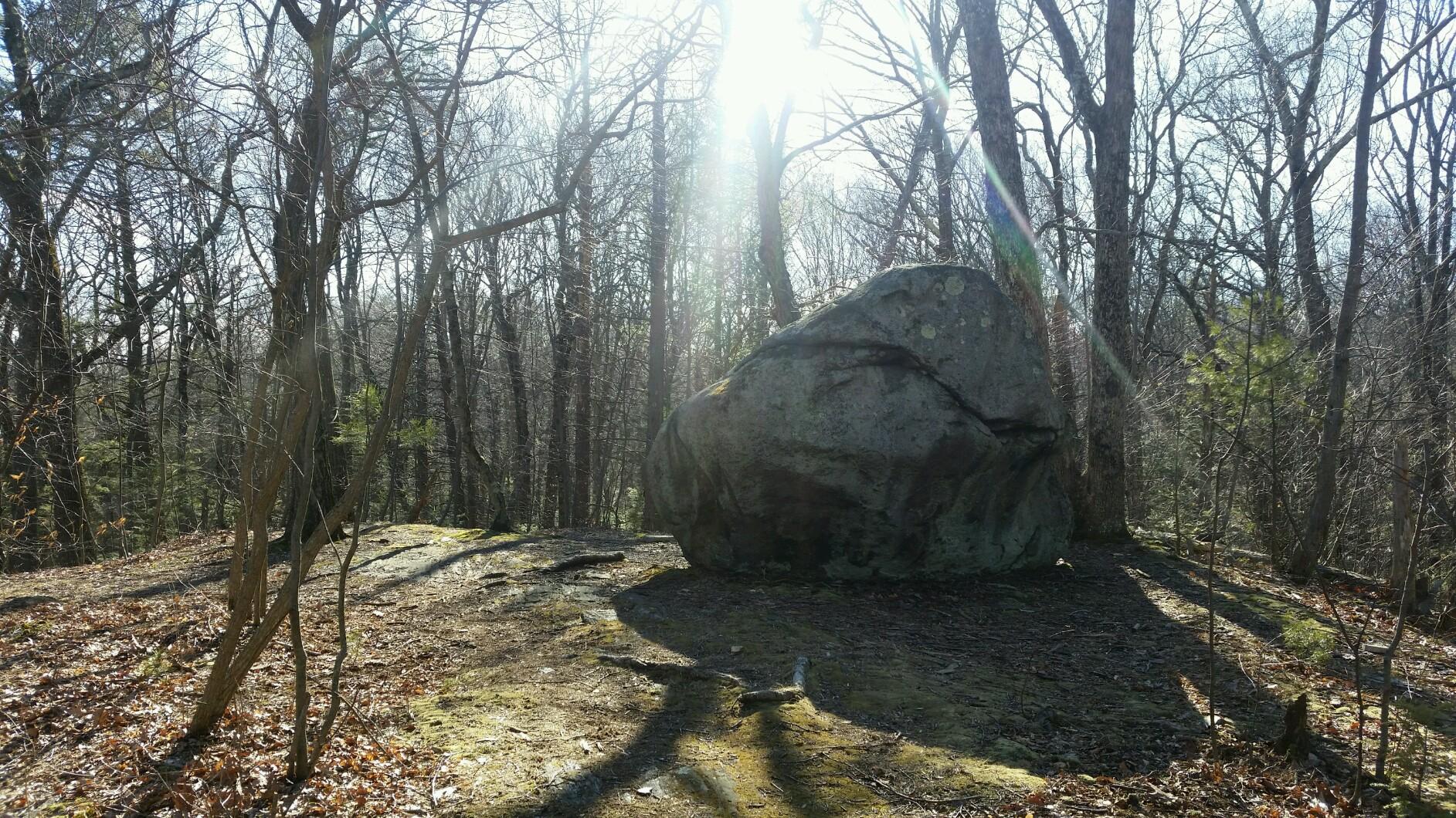 Elderslie Preserve Hiking Trails
