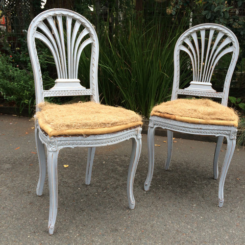 Classic French chairs in Gray