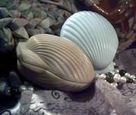 Silicone Large Full Sea Shell Soap Candle Mold