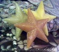 Silicone Christmas Holiday Star Candle Soap Mold