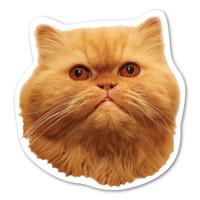 Persian Cat Magnet