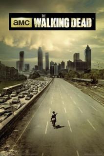 The Walking Dead Season 1 TV Show Poster 24x36