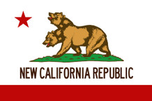 New California Republic Flag Video Gaming Poster 24x36 inch