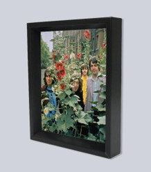 Beatles Flowers Framed Shadow Box 3D Poster 8x10