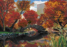 Central Park Seasons Lenticular 3-D Poster - 18.5x26.5