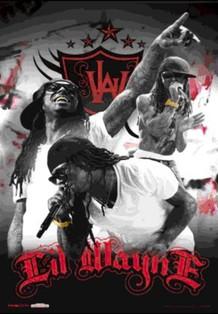 Lil Wayne Rapper Rap Hip Hop Music Artist Performing Lenticular 3-D Poster - 11x17
