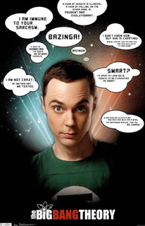 The Big Bang Theory Quotes Television TV Show Series Poster 22x34