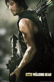 Walking Dead Daryl Bow Profile TV Show Poster 22x34