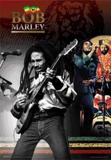 Bob Marley Playing Guitar Reggae Music Lenticular 3D Poster 18.5x26.5