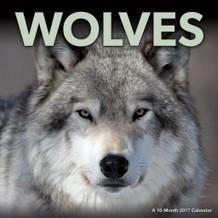Wolves 2017 16 Month Wall Calendar 12x12