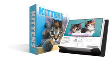 Keith Kimberlin Kittens 2017 Day At A Time Box Calendar 6x5