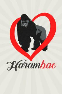 Harambe Is My HaramBAE Funny Poster 12x18