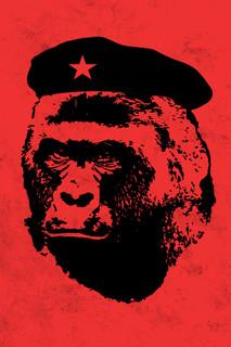 Che Harambe Parody Funny Poster 12x18