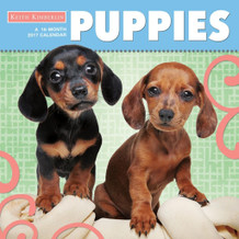 Keith Kimberlin Puppies 2017 16 Month Wall Calendar 12x12