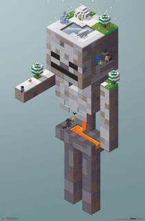 Minecraft Skeleton Tundra Video Gaming Poster 22x34