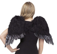 Angel Wings Feathr Chld Blk
