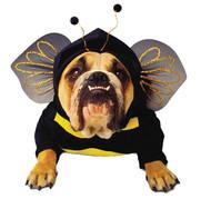 Zelda Bee Pet Small